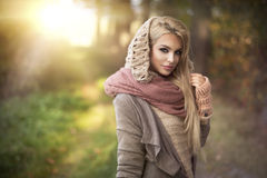 Zmysłowa piękna blondynki kobieta Zdjęcie Stock