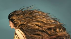 Zmysłowa seksowna kobieta Fryzjera fryzjer męski i salon Zdjęcie Stock