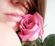 zmysłowa wargi róża Obraz Stock