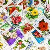 Znaczek drukujący w USSR przedstawień kwiacie Zdjęcie Stock