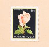 Znaczek drukujący w Węgry pokazuje kwiatu około 1980, obraz royalty free