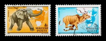 Znaczek pocztowy Fotografia Stock