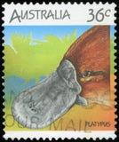 Znaczek pocztowy - Australia fotografia royalty free