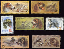 znaczki Obraz Stock
