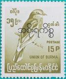 Znaczki pocztowi drukowali w zjednoczeniu Birma Zdjęcia Stock