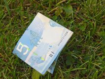 znajdujący pieniądze Fotografia Stock