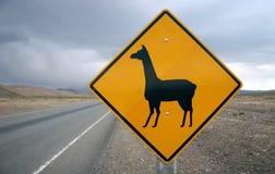 znak drogowy lamą. Obrazy Royalty Free
