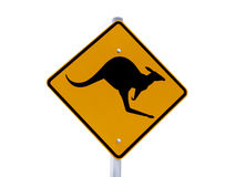 znak kangura Zdjęcie Royalty Free
