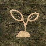 Znak na barkentynie roślina ilustracji