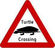 Znak ostrzegawczy z żółwiami na drodze Zdjęcie Stock