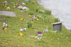 Znak wiosna! obraz royalty free