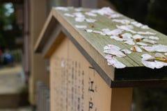 Znak zakrywający Sakura japońskim językiem infoemation Zdjęcia Stock
