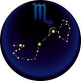 znak zodiaku skorpion Obrazy Stock