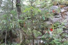 Znaki i symbole w halnym lesie zdjęcie stock