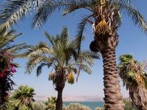 Znaki, ornamenty na skałach blisko morza Galilee Fotografia Stock