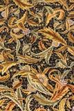 Znakomicie wyplatający jedwabniczy dywan zdjęcie royalty free