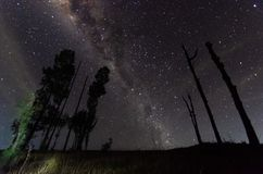 Znakomita klarowność, piękno i, Indonesia zdjęcia stock