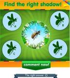 Znaleziska dobra cienia pszczoła Zdjęcia Stock
