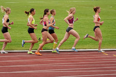 Znamensky Memorial 2014. Zhukovsky, Moscow region, Russia - June 27, 2014: Women compete in 5000 meters during Znamensky Memorial. The competitions is one of the stock image