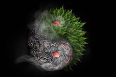Zniszczenie i odradzanie 3D rendering Yin Yang symbol wciela lawowego przepływu i roślinności odrośnięcie podąża powulkanicznego  ilustracja wektor