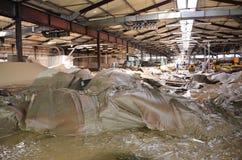 Zniszczony produkt końcowy jeden papierowy przemysł, karton i papier, Fotografia Royalty Free