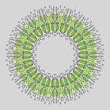 Zoccolo rotondo delle foglie verdi Fotografie Stock