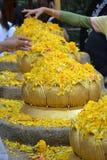 Złoci Lotosowi kwiaty Fotografia Stock