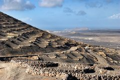 Zocos on island of Lanzarote Stock Images