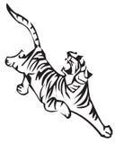 Zodíaco do tigre Fotografia de Stock Royalty Free