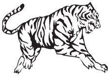 Zodíaco do tigre Imagens de Stock Royalty Free