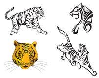 zodiac έτους τιγρών ελεύθερη απεικόνιση δικαιώματος