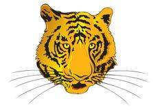 zodiac έτους τιγρών διανυσματική απεικόνιση