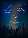 Zodiac αστερισμός στο νυχτερινό ουρανό πέρα από το δασικό Σκορπιό, s Στοκ εικόνα με δικαίωμα ελεύθερης χρήσης