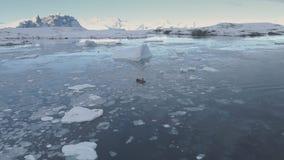 Zodiac παγετώνας πανιών βαρκών που ακολουθεί την εναέρια άποψη απόθεμα βίντεο