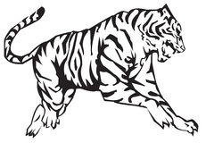 zodiac τιγρών ελεύθερη απεικόνιση δικαιώματος