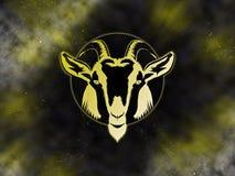 Zodiac Capricorn Starfield Royalty Free Stock Photos