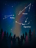 Zodiac constellation in the night sky over the forest pesces, ar Royalty Free Stock Image