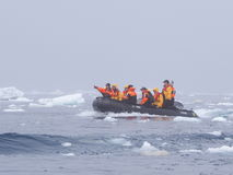 Zodiac cruise Expedition in Antarctica Stock Image