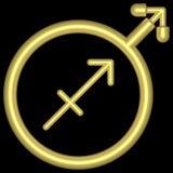 zodiac för saggitarius 002 Arkivfoton