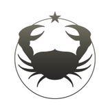 zodiac för symboler tolv för illustrationsdesigntecken olik cancer också vektor för coreldrawillustration vektor illustrationer