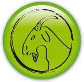 Zodiac-Horned goat Stock Photography