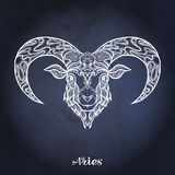 Zodiac sign. Astrological horoscope collection. Vector illustration. Aries, sheep, ram Zodiac sign. Astrological horoscope collection. White on dark blue, black royalty free illustration