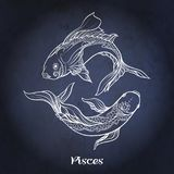Zodiac sign. Astrological horoscope collection. Vector illustration. Pisces, fishes, Zodiac sign. Astrological horoscope collection. White on dark blue, black vector illustration