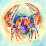 Zodiac sign Cancer. Series of 12 signs of the zodiac, zodiac animals stock illustration