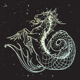 Zodiac sign Capricorn. Night sky. Zodiac sign Capricorn. Fantastic sea creature with body of a goat and a fish tail. Vintage art nouveau style concept art for Royalty Free Stock Photography