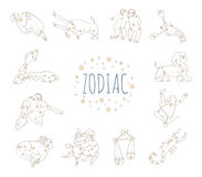 Zodiac sign 12. 12 constellation with pattern stars simple simbol Stock Photography