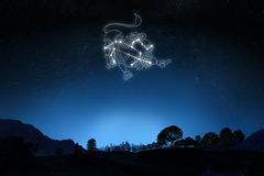 Zodiac Sign Leo with a star and symbol outline. On a gradient sky background royalty free stock photos
