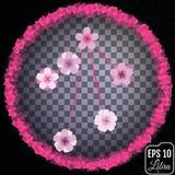 Zodiac sign Libra. Sakura concept. Flowers concept. Constellatio Royalty Free Stock Images