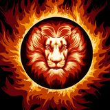 Zodiac Sign of Lion in Fire Circle. Lion head in Flame. Zodiac symbol Leo on fire background. Vector illustration Stock Image