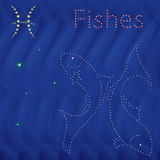 Zodiac sign Pisces contour on the starry sky Stock Photos